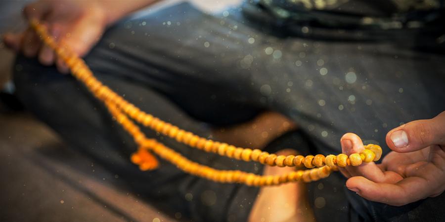 Le Bhakti Yoga & Les Champignons Magiques