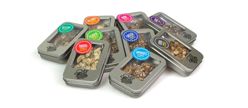 Dosage Magic Truffles - MushMagic