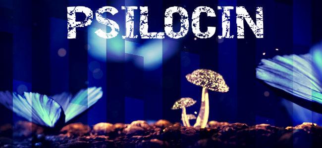 PSILOCIN