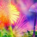 Breaking Down The 4 Components Of Magic Mushrooms