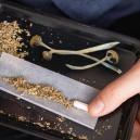 What Happens If You Smoke Magic Mushrooms?