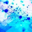 Psilocybin Promotes The Growth Of New Brain Cells